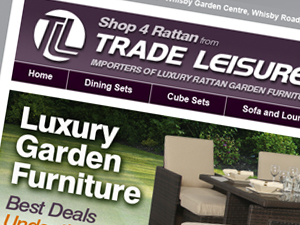 Furniture website design and programming