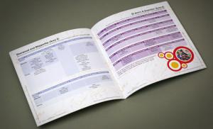 public sector design company, childrens activity brochure designers, brochure designers