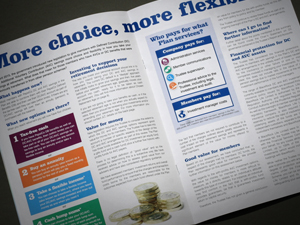 PepsiCo Brochure Design