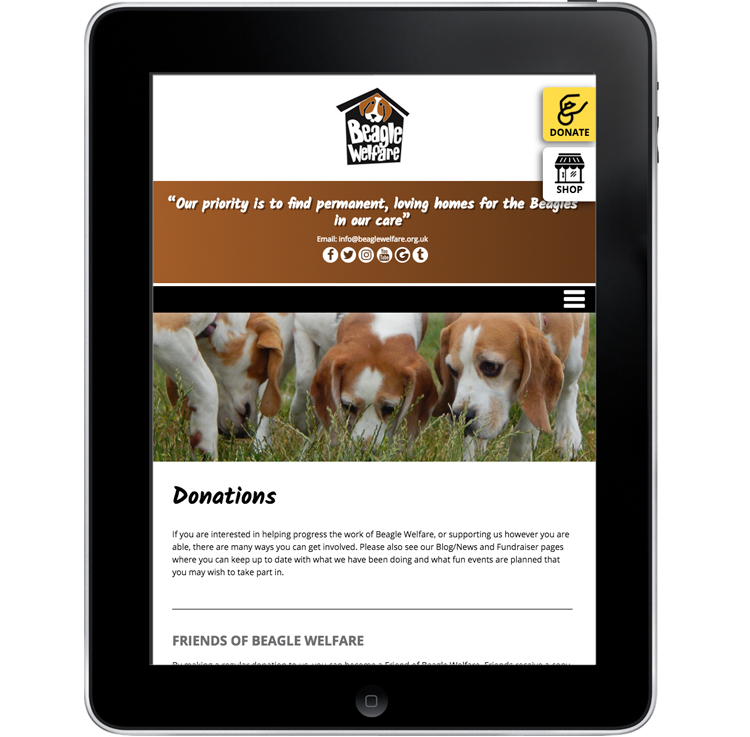 dog charity website design, web designers for charity, buxton website design, charity web developers