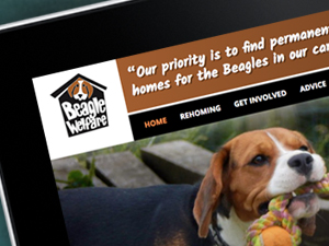 Dog Charity Website Design