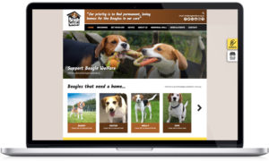 charity website designers, web design for chariies, dog charity web design, website design peak district