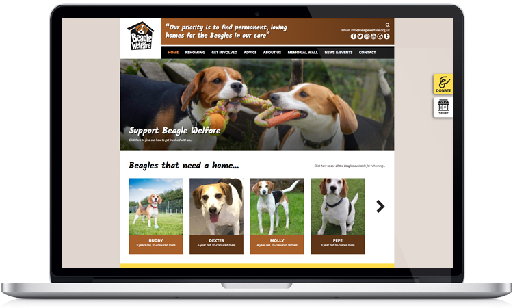 charity website designers, web design for charities, dog charity web design, website design peak district
