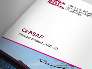 University Annual Report Design